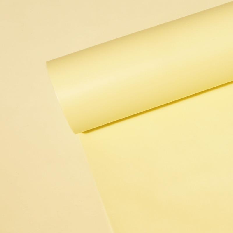 2. 단색(Solid) W#102 아이보리(Ivory)(530x18m)