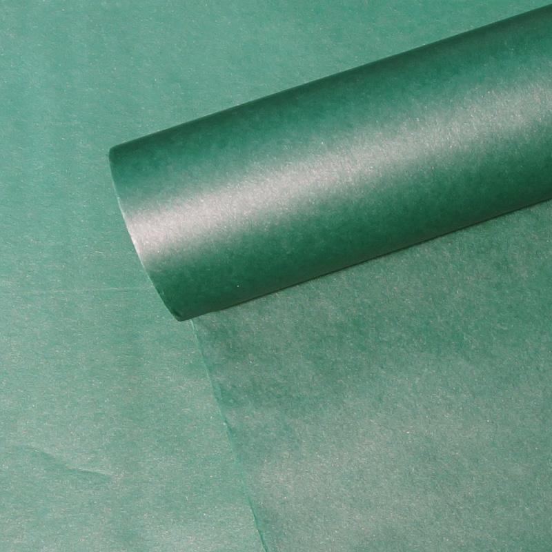 W#108 청녹색(Blue-Green Algal)(530x18m)