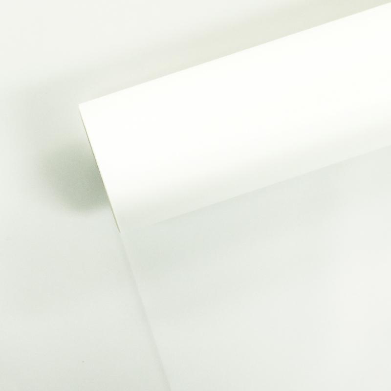 FL#4-백색